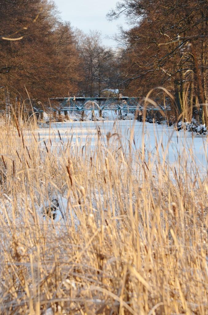 vinterskrud 3